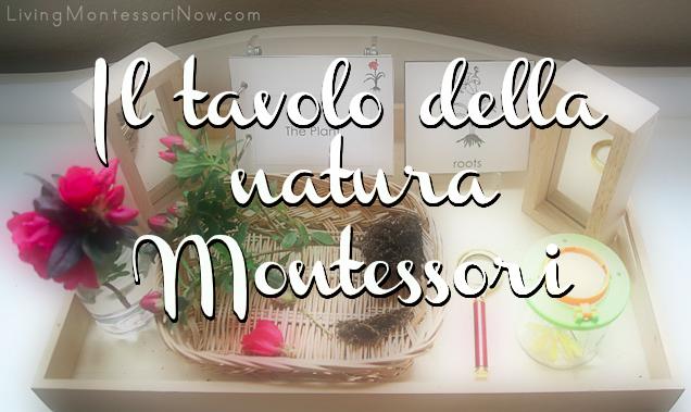Il tavolo della natura Montessori