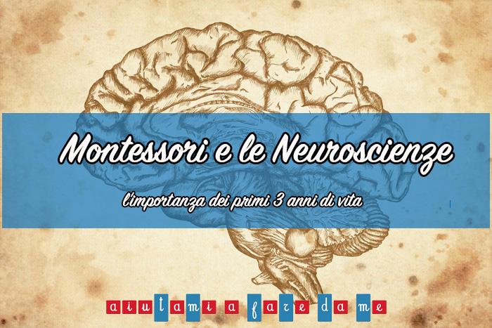 Montessori e le Neuroscienze: l'importanza dei primi 3 anni di vita